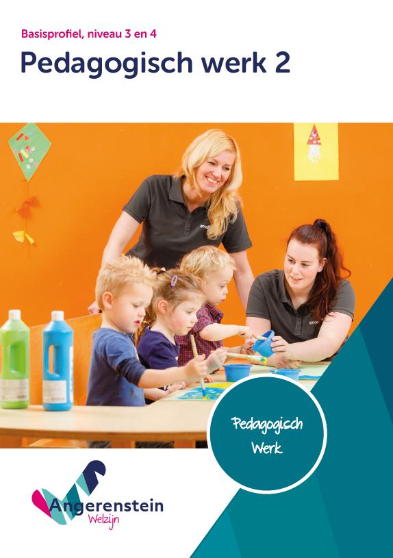 Afbeelding van Pedagogisch werk 2 | combipakket