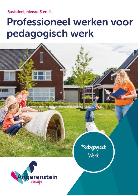 Afbeelding van Professioneel werken voor pedagogisch werk | combipakket
