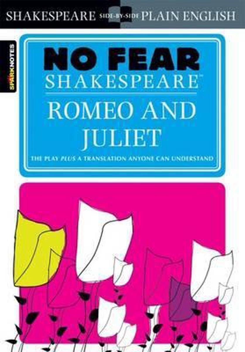 Afbeelding van Romeo and Juliet
