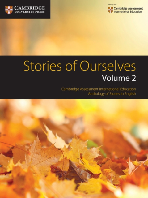 Afbeelding van Stories of Ourselves